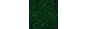 Пленка самоклеящаяся голограмма 0,45*8м М016С зеленая