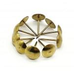 Гвоздики декоративные (100шт.) золото